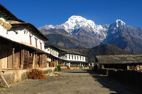 Best Reliable Tour Operators In Nepal